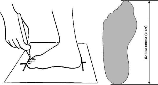 Длина стопы в СМ