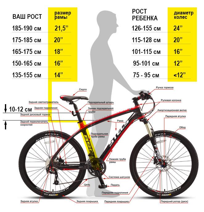 Таблица размеров рам велосипедов Stels
